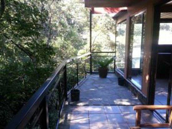 Forest Dreams Hotel : Balcón donde llegan monos cara blanca