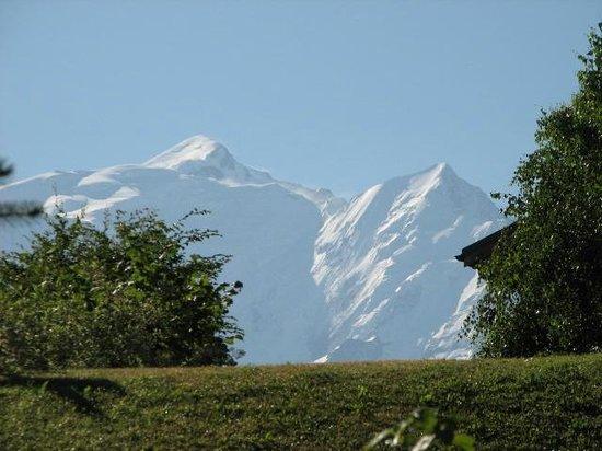 Le Cerf Amoureux : vue mont blanc