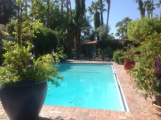 Villa Royale Inn: main pool at 10am. nice and quiet
