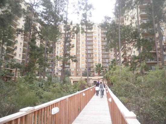 Lake Eve Resort: El hotel visto desde el lago.....