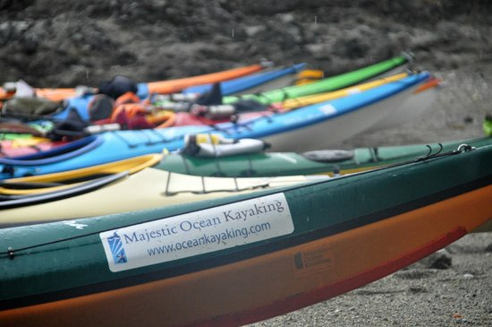 Majestic Ocean Kayaking: Kayaks on Gibraltar Island, in the Broken Group Islands