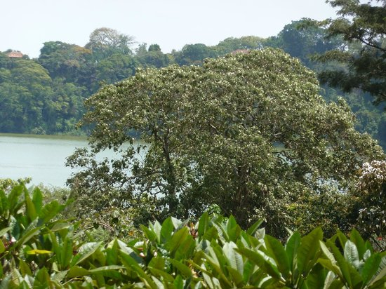 Arusha Serena Hotel, Resort & Spa: View of Lake Diluti from Lodge