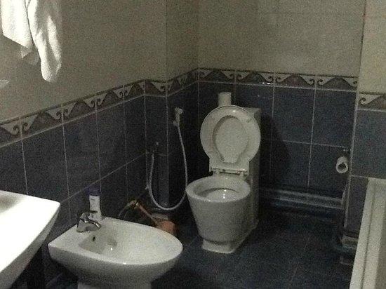 Hotel Le Majestic : salle de bain