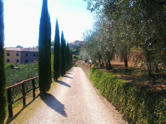 Residence La Ferriera: Drive from the village
