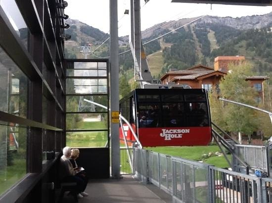 Jackson Hole Aerial Tram : Jackson Hole Tram holds up to 100 skiers with equipment -and a lot of sight seeing...