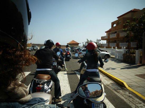 Brújula Alquiler de motos: trip center