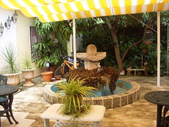 Pedrito Hostal: el maravilloso patio
