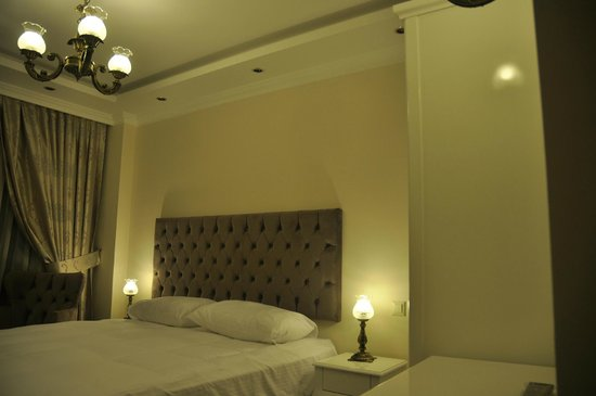 World Heritage Hotel Istanbul: Standart Double Room