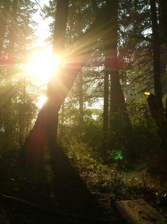 Heyburn State Park: Benewah Campground
