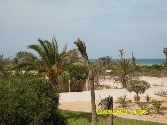 Yadis Djerba Golf Thalasso & Spa: vista dalla camera