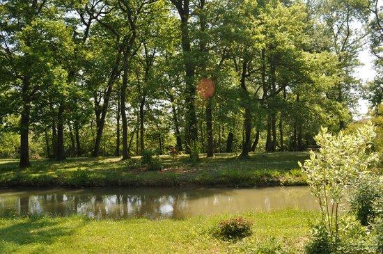 Le Moulin de Rudelle: Parc & Forêt