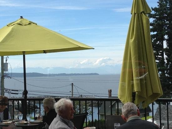 Tree Frog Bistro: that view!