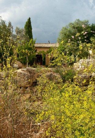 Agroturismo Sa Casa Rotja: Sa casa Rotja