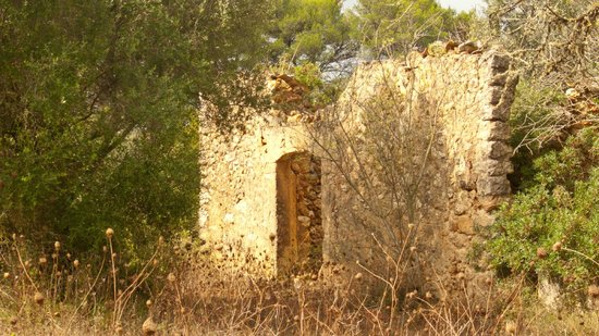 Agroturismo Sa Casa Rotja: Past grandeur, a local ruin, ( great to paint) or photograph.