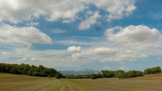 Agroturismo Sa Casa Rotja: Surrounding area