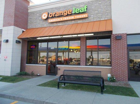 Orange Leaf Shelbyville: Orange Leaf Frozen Yogurt, Shelbyville, Indiana