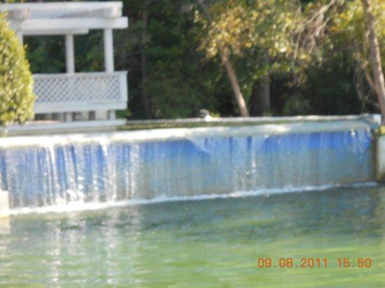 Ocean Creek Resort : Welcoming Waterfall next to Reservation Center