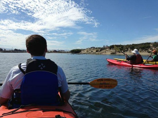 Kayak Connection: Calm waters, beautiful day
