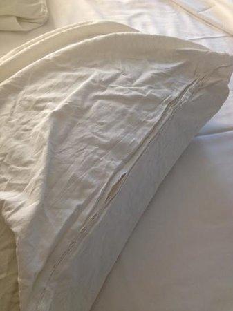 hotelF1 Saint Brieuc : pillow
