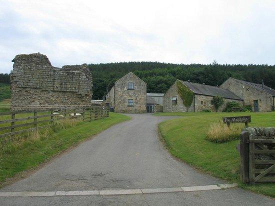 Tosson Tower Farm: Millstream (centre)
