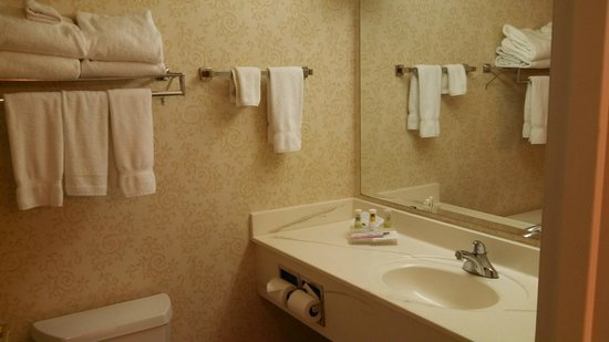 Country Inn & Suites by Radisson, Fond du Lac, WI : Country Inn Fond du Lac