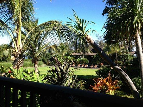 Lumeria Maui Retreat: Picture from Balcony
