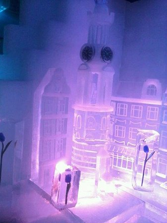Atlanta Hotel: in the ice bar