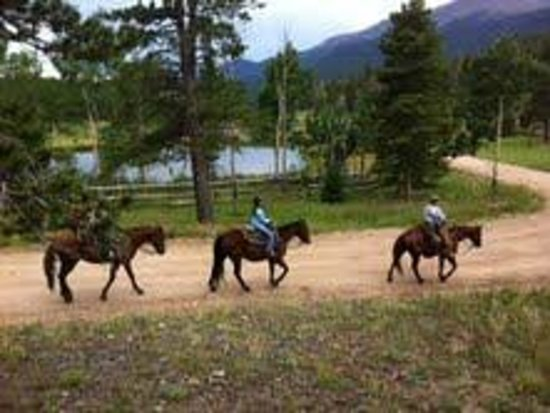 Wind River Christian Family Dude Ranch: Trail ride opportunities every day