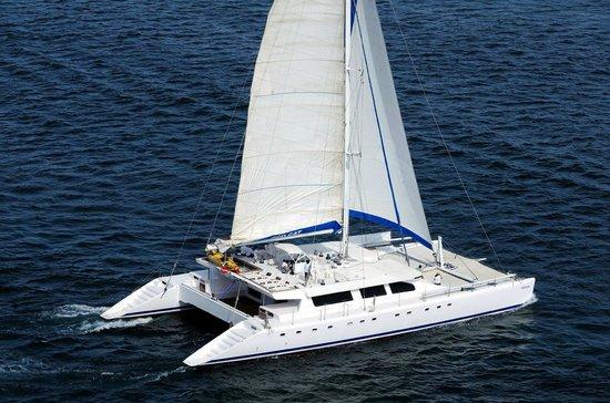 Ecocat Catamaran Tours