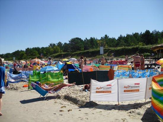 Krynica Morska: Beach