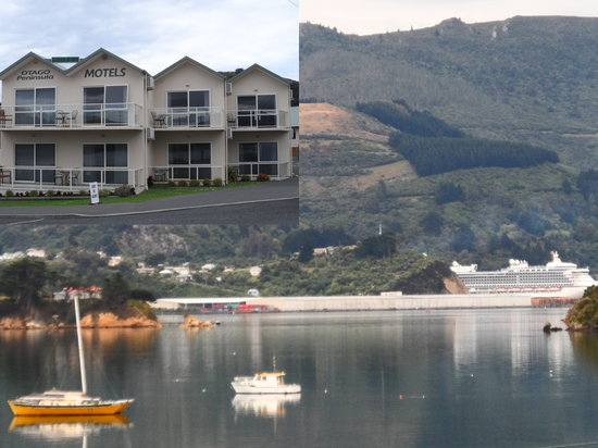 Otago Peninsula Motel: Stunning views from all units.