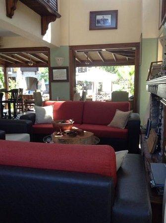 The Olive Tree Studios : Bar area