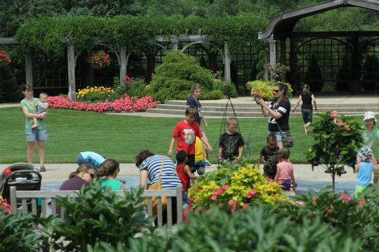 Klehm Arboretum U0026 Botanic Garden: Donation Day