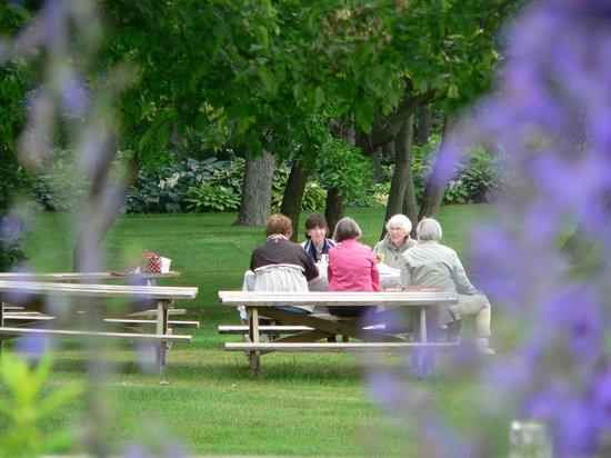 Klehm Arboretum U0026 Botanic Garden: Picnic Areas