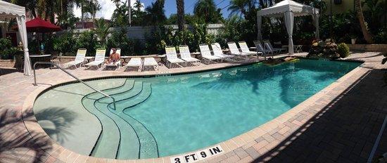 Villa Venice Men's Resort: Villa Venice Pool