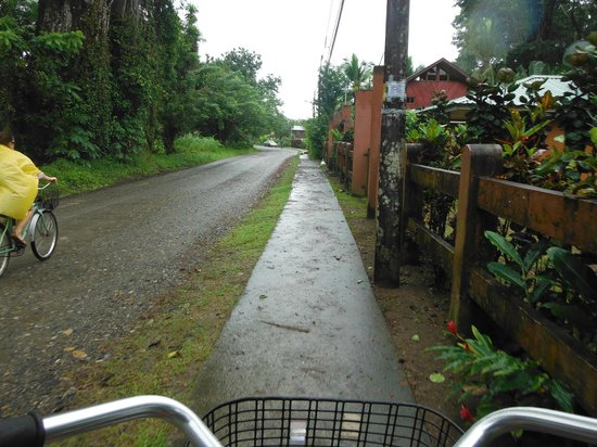 Hotel Caribbean Coconut: bike ride to town rental is near the Coconut