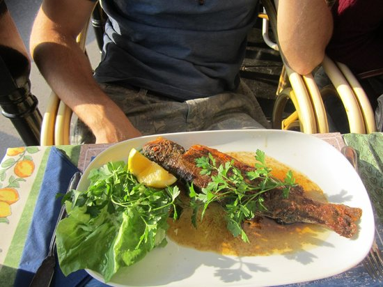 Taverne Wiertz : fish