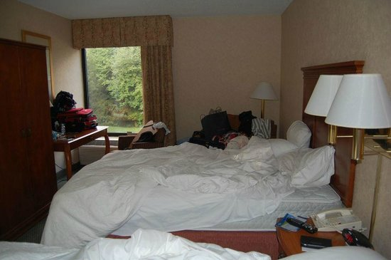 Baymont Inn and Suites Greenville-Haywood: Quarto