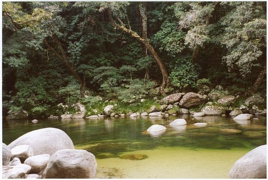 Hibiscus Resort & Spa: Mossman Gorge