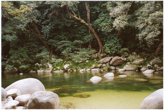 Hibiscus Resort & Spa : Mossman Gorge