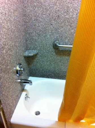 Days Inn Weldon Roanoke Rapids : Newer bathrooms was a plus!