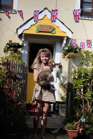 The Little Cornish B&B: Extra bonus! fat cat!