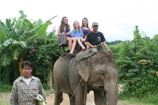 Nam Ou Riverside Hotel & Resort: Riding the elephant