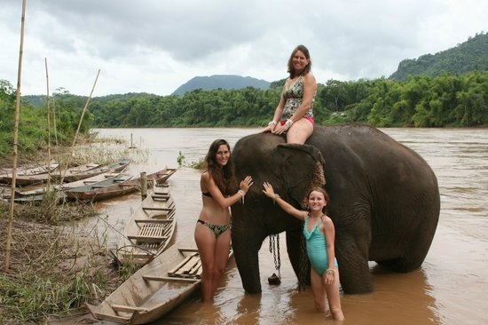 Nam Ou Riverside Hotel & Resort : In the Nam Ou with the elephant