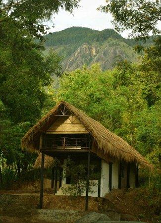 Ella Jungle Inn: Family Apartment