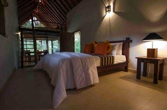 Ella Jungle Inn: Family Room