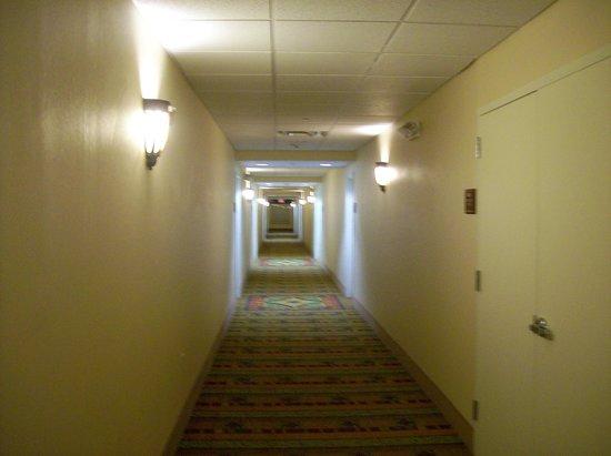 Homewood Suites by Hilton Bel Air: Hallway corridors to suites