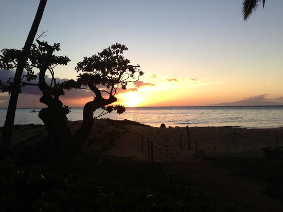 Dolphins Point Maui: Beautiful eve Feb 2013