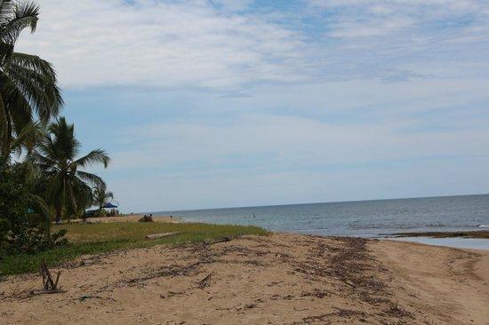 Puerto Viejo Beach: Punta Uva, nice beach.