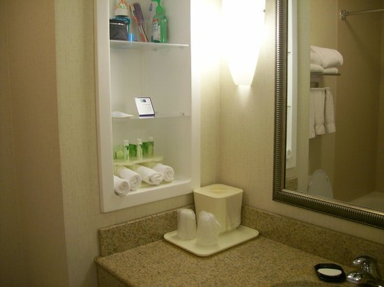 Holiday Inn Express Hotel & Suites Wilmington-Newark : Bathroom In Room Shelves
